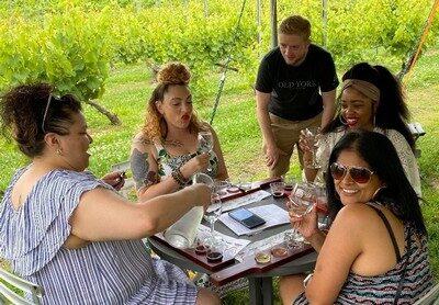 Guided Wine Tastings