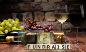 Fundraising for Not For Profit Organizations
